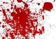 جزئیات قتل فجیع خانوادگی خیابان جردن